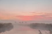 zons opkomst in mist_1